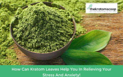 How Can Kratom Leaves Help You In Relieving Your Stress And Anxiety!
