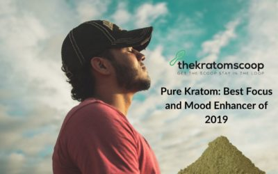 Pure Kratom: Best Focus and Mood Enhancer of 2019