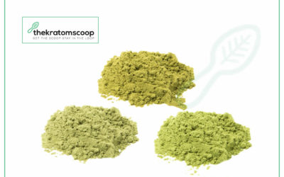 Best Kratom Strains For Intensify Your Quality Of Life!