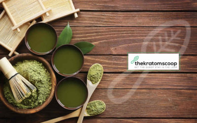 How Kratom Intake Can Improve Your Life?
