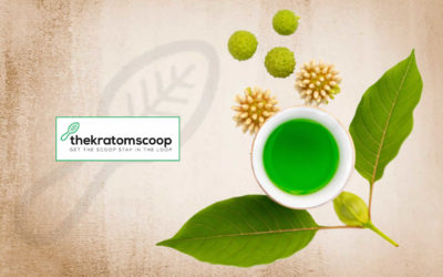 Kratom: Beneficial Botanical Or Suspicious Herb?