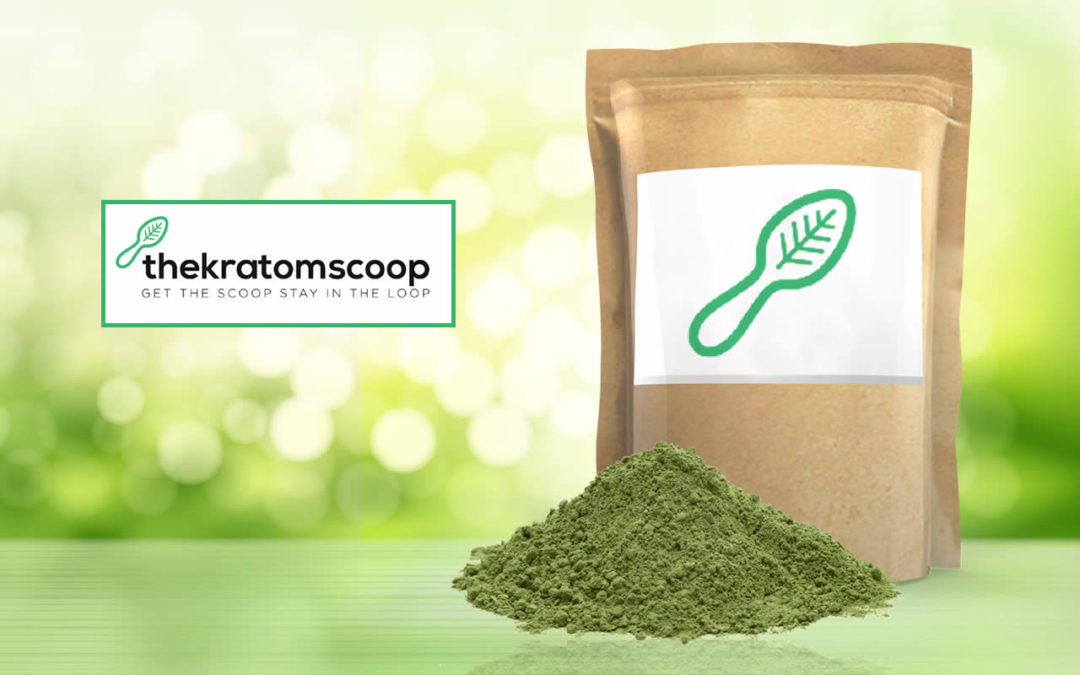 Questions About Kratom Powder Every User Should Easily Answer